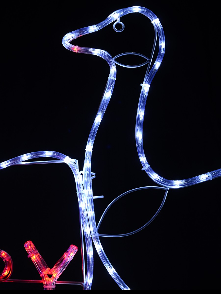 Christmas Kangaroo Lights.Australian Coat Of Arms Merry Aussie Christmas Led Rope