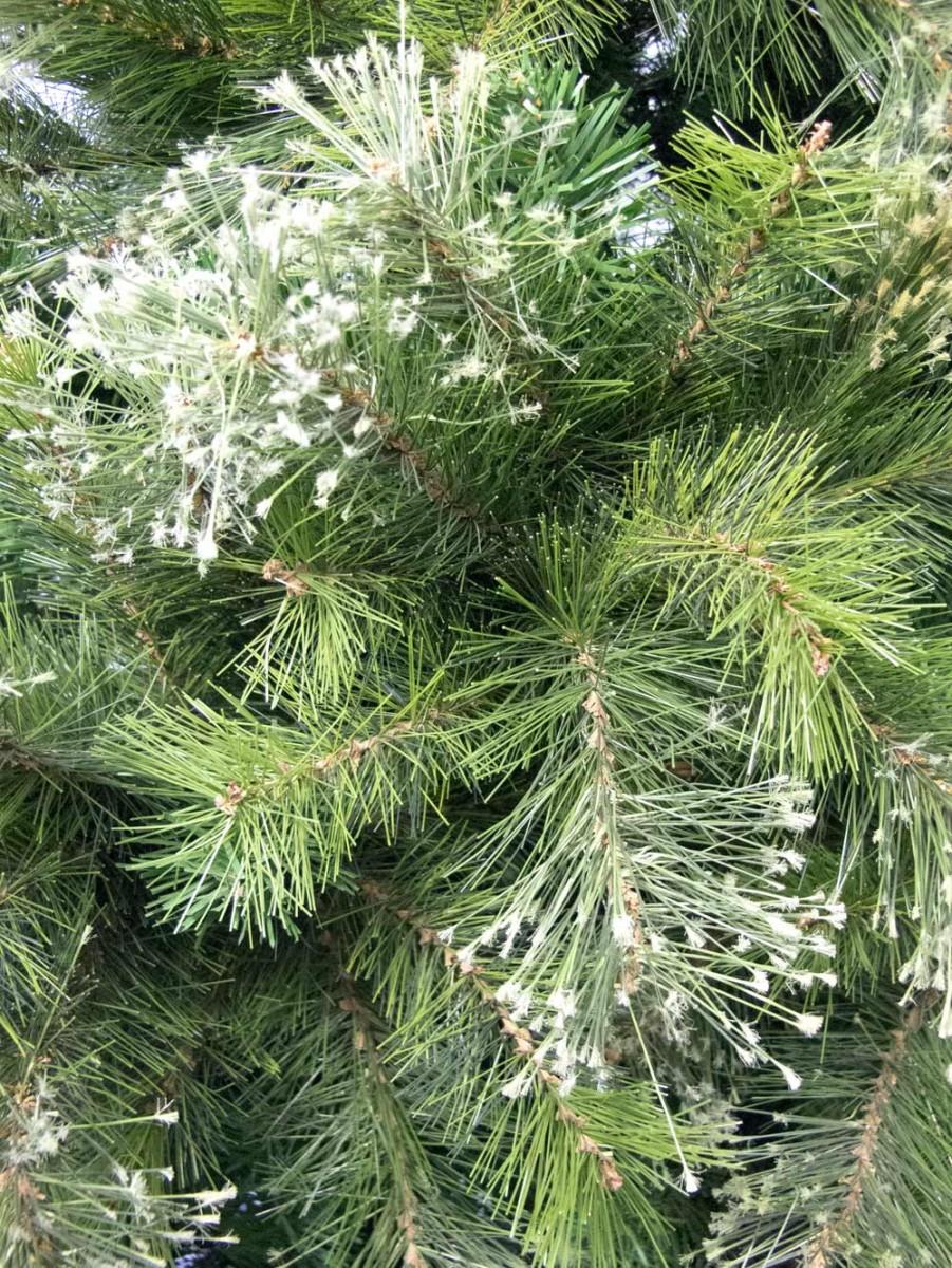 Stratford Mixed Pine Christmas Tree 2 3m Christmas
