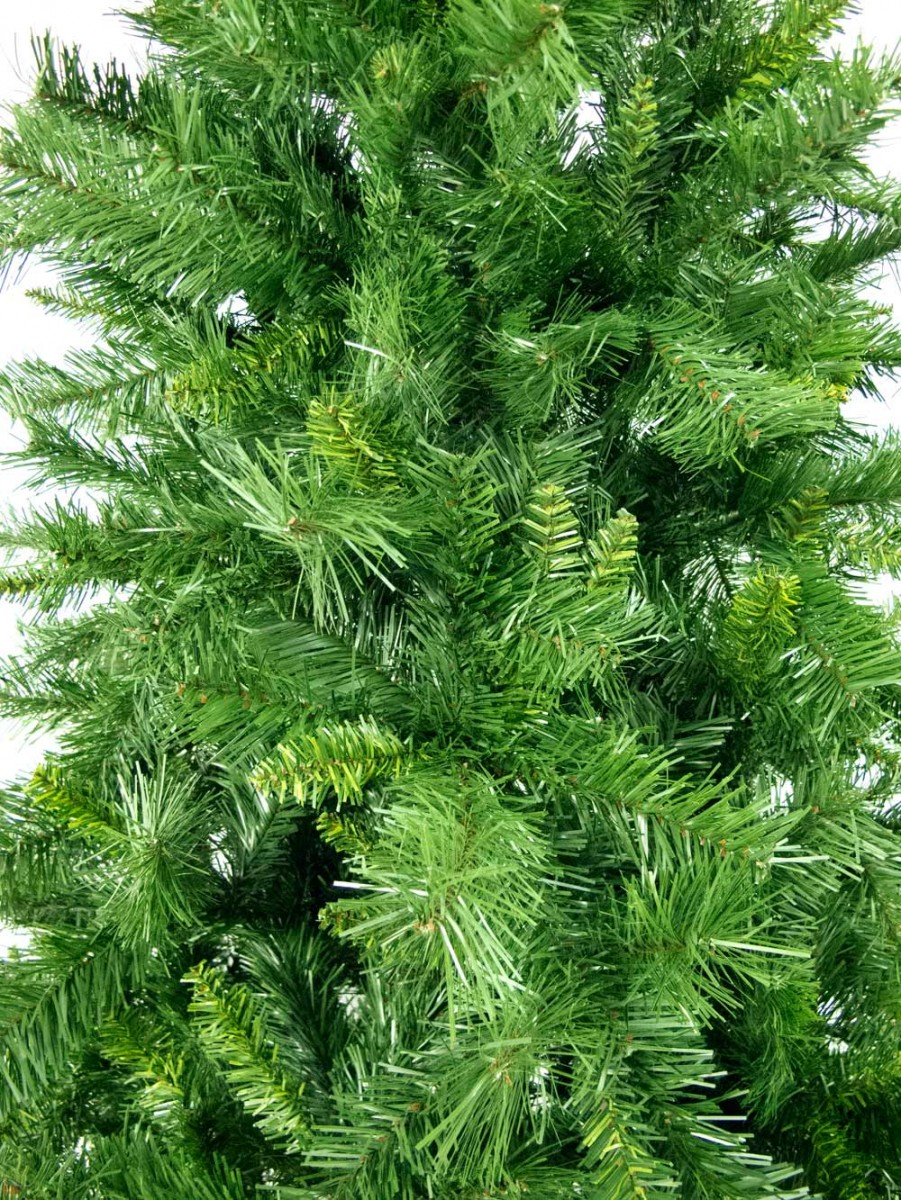 Eastern Pine Christmas Tree - 3m | Christmas Trees | The Christmas ...