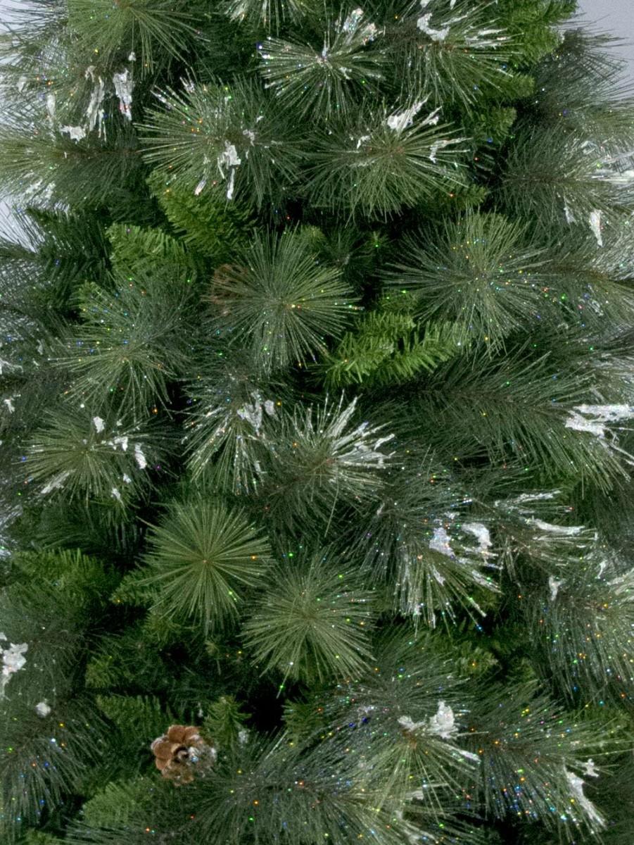 Siberian Cedar Pine Christmas Tree - 2.3m   Christmas ...